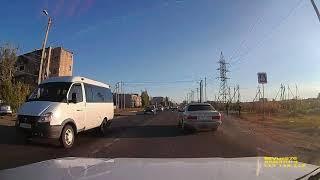 В Астрахани сбили собаку