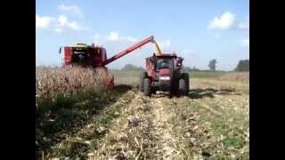 preview picture of video 'Cosecha de maiz en chacabuco con Don Roque 150 Parte 1'