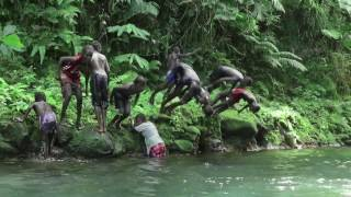Forest-based solutions to improve people's lives