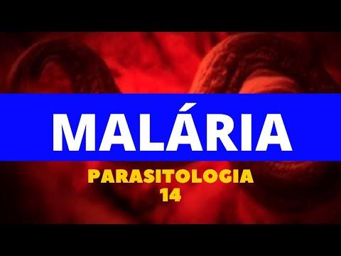 Természetfeletti paraziták