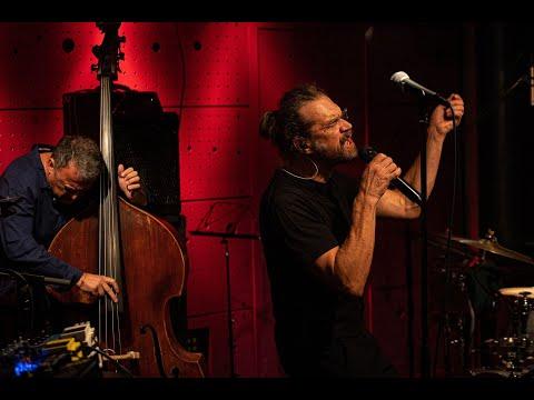 Video: Dan Bárta & Robert Balzar Trio