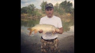 Рыбалка в казахстане на реке каратал