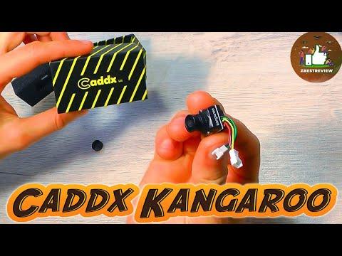 ✔ FPV Камера Caddx Kangaroo - Для установки в Whoop Дроны! 1000TVL 2.1mm!