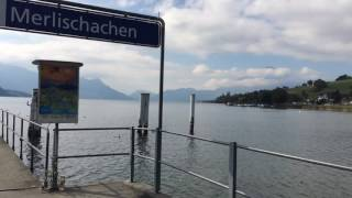 スイス発 メルリシャッヘンの船乗り場【スイス情報.com】