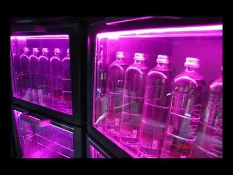 Video LED verlichting