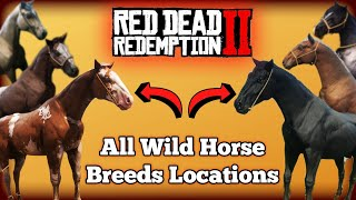 All Wild Horse Breed Locations in Red Dead Redemption 2