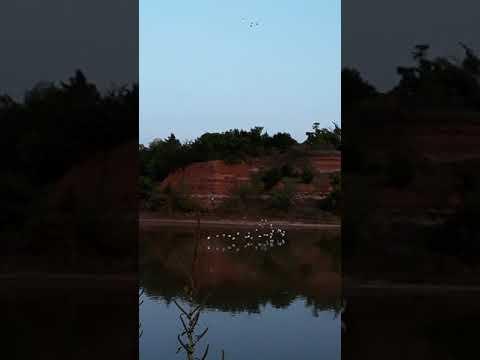 Video Of Great Salt Plains, OK