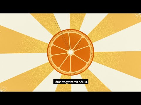Kifli  - Gyümölcsforradalom