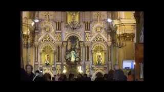 preview picture of video 'PROCESIÓN DE LA PURÍSIMA EN TORREVIEJA.wmv'
