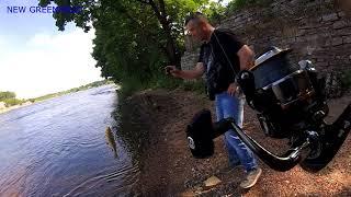 Рыбалка в июне на что ловить голавля