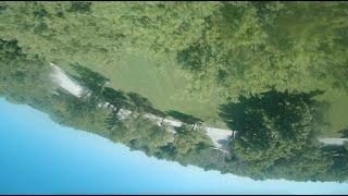 Treetop Skimming - EmuFlight - ImpulseRC Apex - FPV Freestyle - T-Motor Ethix TBS Foxeer