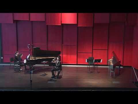 Vaughan Williams Romanza March 30th 2017