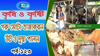 Krishi O Krishti | গরু মোটা তাজাকরন, উট ও দুম্বা পালন | Ep-123 | Rtv Lifestyle