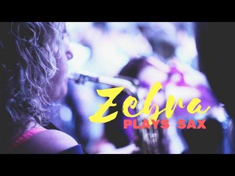 Zebra Plays Saxophone Video
