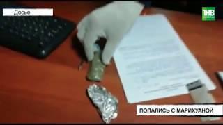 Более полукилограмма марихуаны изъяли полицейские в Чистополе | ТНВ