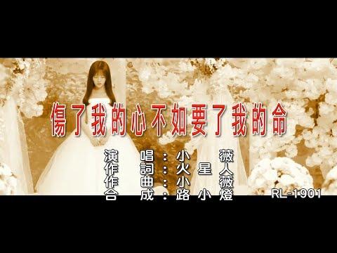 小薇《傷了我的心不如要了我的命》(1080P) KTV