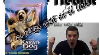 CHARLIE TIE BELT-reseña karate dog