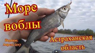 Икряное астраханская область снять жилье для рыбалки
