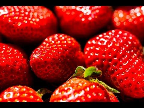 Erdbeeren auf der Terrasse/dem Balkon - Balkonkasten bepflanzen