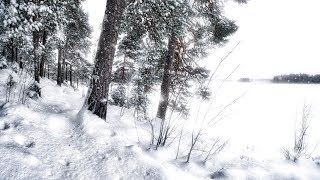 Wintersun - Loneliness (Winter) Official Lyric Video - YouTube