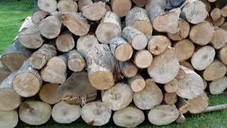 Seasoned Firewood and a Moisture Meter