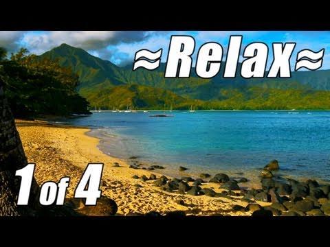 يوم كامل على شواطئ جزر هاواي 1