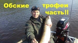 Рыбалка. Обские трофеи часть 2