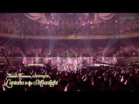 【声優動画】田村ゆかりのライブ*Lantana in the Moonlight*のダイジェスト映像公開