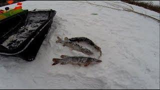 Рыбалка около базы емеля фиш
