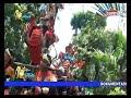 Download Video The Best Putra Giri Krangkeng-Di Madu Voc.Yulli