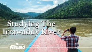 Studying The Irrawaddy River