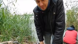 Рыбалка на северском донце в ростовской области 2019