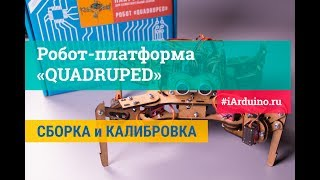 Сборка и калибровка робота-платформы «QUADRUPED» (четырехногий) для Arduino