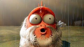 LARVA - THE STORM | Cartoon Movie | Cartoons For Children | Larva Cartoon | LARVA Official