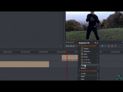 Lightworks Tutorial Changing Speed And Reversing Video