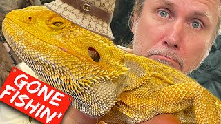 MY 13 YEAR OLD BEARDED DRAGON IS RETIRING!! | BRIAN BARCZYK