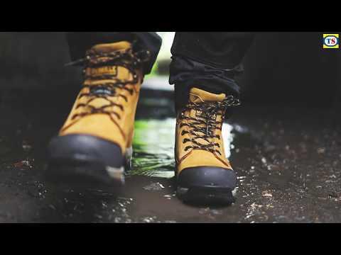 DeWalt Davis Safety Boots