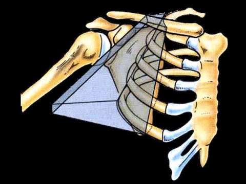 Cum să anesteziați durerea musculară în articulații