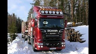Scania R580 V8 6X4 Timber Truck Loading & Unloading