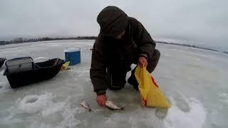 Отчет о рыбалке на реке сить