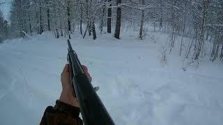 Смотреть онлайн Охота на косулю зимой с подхода Сибирь