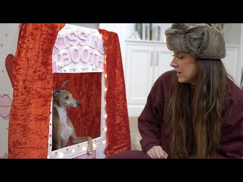 Dog Kissing Booth