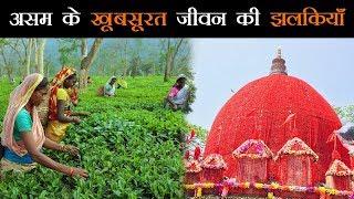 शांत और खूबसूरत राज्य है असम, हर तरफ दिखता है विकास