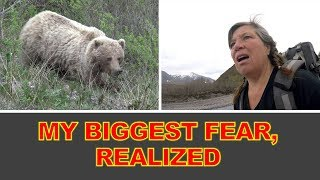 I Meet Mama Grizzly & Cub on a Solo Hike in Denali National Park, Alaska!