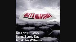 609 Joy Williams - Sunny Day
