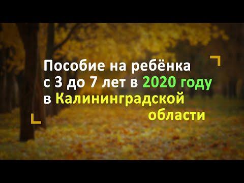 Пособие на ребёнка с 3 до 7 лет в Калининградской области в 2020 году