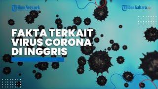 Hasil Cek Fakta 4 Klaim Menyesatkan Terkait Virus Corona di Inggris