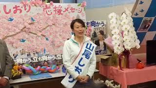 山尾しおりさん選挙戦フィナーレ