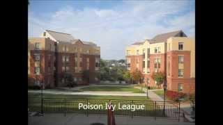 Poison Ivy League