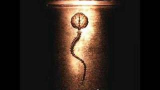 Fear Factory - Where Evil Dwells